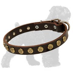 Walking Strong Leather Black Russian Terrier Collar with Brass Dotted Circles