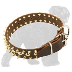 Spiked and Studded Leather Russian Terrier Collar with Strong Fittings