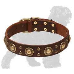 Handcrafted Leather Russian Terrier Collar with Stylish Studs and Conchos