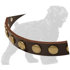 Fancy Circles on Training Leather Dog Collar for Russian Terrier