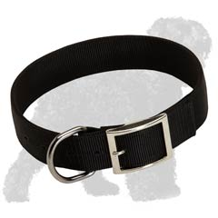 2 ply nylon collar for Black Russian Terrier
