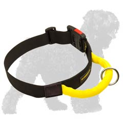 Wide nylon collar for Black Russian Terrier