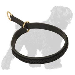 Fashionable Black Russian Terrier collar
