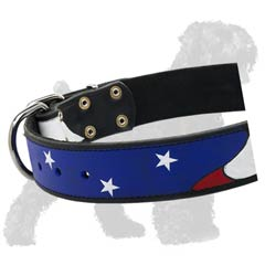 American Patriot collar for Black Russian Terrier