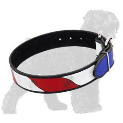 Water resistant paints for great look of this collar