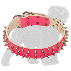 Stylish Pink Walking Spiked Leather Russian Terrier Collar