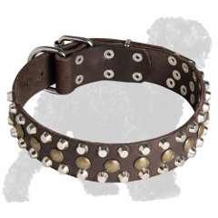 Decorated Leather Black Russian Terrier Collar
