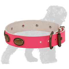 Pink Strong Walking Leather Russian Terrier Collar with Brass Hardware