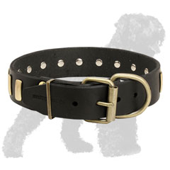 Reliable Training Leather Russian Terrier Collar with Brass Hardware