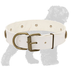 White Strong Leather Russian Terrier Collar with Brass Hardware