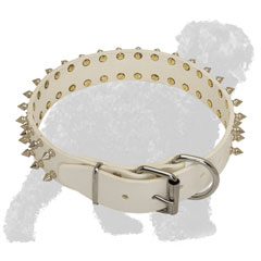 Spiked White Leather Black Russian Terrier Collar with Strong Buckle