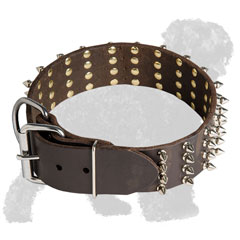 Spiked Wide Leather Russian Terrier Collar with Reliable Buckle