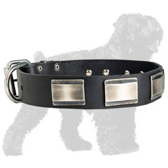 Leather Dog Collar for Training