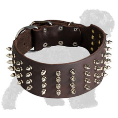 Walking Leather Russian Terrier Collar with Spikes