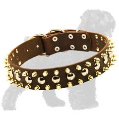 Decorative Leather Black Russian Terrier Collar with Spikes and Studs