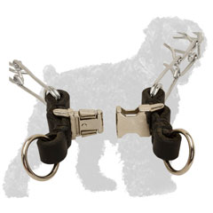 Durable Quick Release Buckle of Chrome Plated Steel Russian Terrier Prong Collar