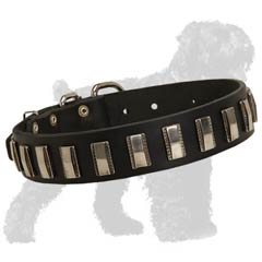 Russian Terrier Collar of an Elegant Design