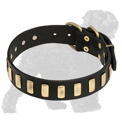 Walking Leather Russian Terrier Collar with Vertical Brass Plates