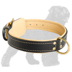 Comfortable Leather Russian Terrier Collar with Fur Protection Plate