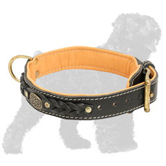 Braided Padded Walking Leather Russian Terrier Collar