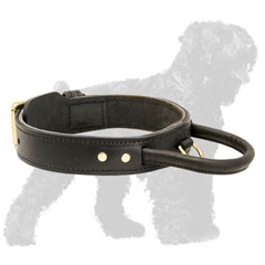 Soft Padded Walking Leather Russian Terrier Collar