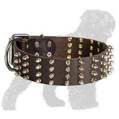 Walking Spiked Wide Leather Black Russian Terrier Collar