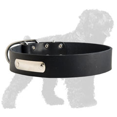 Training Leather Russian Terrier Collar with ID Tag