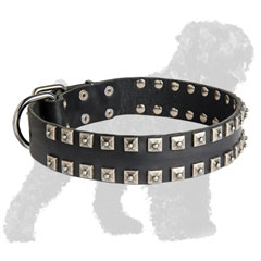 Walking Leather Russian Terrier Collar with Studs