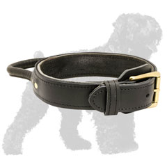 Adjustable Leather Russian Terrier Collar with Handle and Brass Fittings
