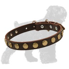 Walking Leather Black Russian Terrier Collar with Circles