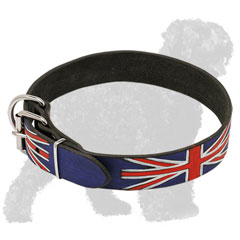 Adjustable Painted Leather Russian Terrier Collar with Nickel Buckle
