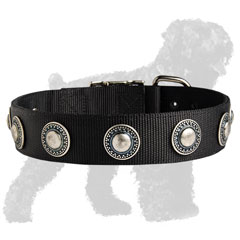 Walking Nylon Collar for Russian Terrier with Conchos