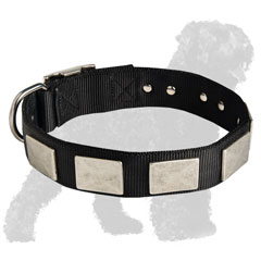 Walking Nylon Collar for Russian Terrier with Plates