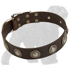 Uniquely Designed Laether Dog Collar