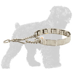 Stainless Steel Prong Russian Terrier Collar for Behavior Correction