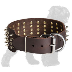 Spiked Walking Leather Russian Terrier Collar with Buckle