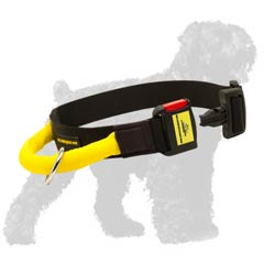 Great collar with quick release buckle for Black Russian Terrier