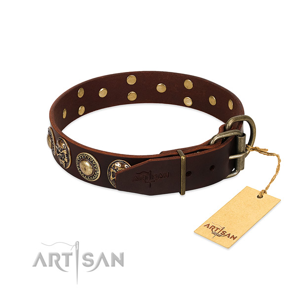 Rust-proof traditional buckle on basic training dog collar