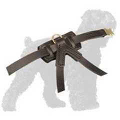 Excusivly Designed Russian Terrier Leather Harness