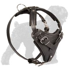 Free moving adjustable harness for Black Russian Terrier