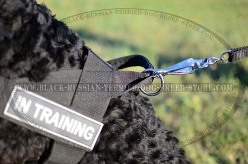 Fittings on Adjustable Tracking Nylon Russian Terrier Harness