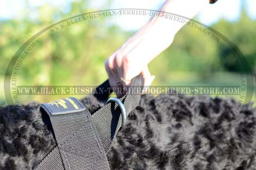 Handle on Fashion Nylon Russian Terrier Harness