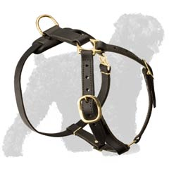 Excellent Quality Russian Terrier Harness