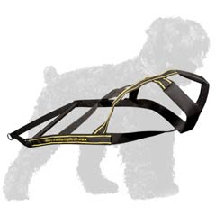Reliable Nylon Black Russian Terrier Harness
