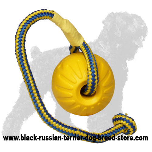 Foam Black Russian Terrier Ball for Playing