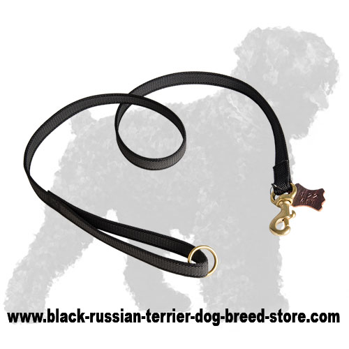 Innovative Durable Nylon Russian Terrier Lead