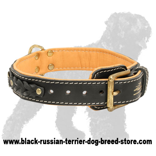 Royal Nappa Padded Hand Made Leather Russian Terrier Collar