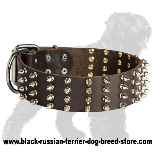 Wide Spiked Leather Russian Terrier Collar