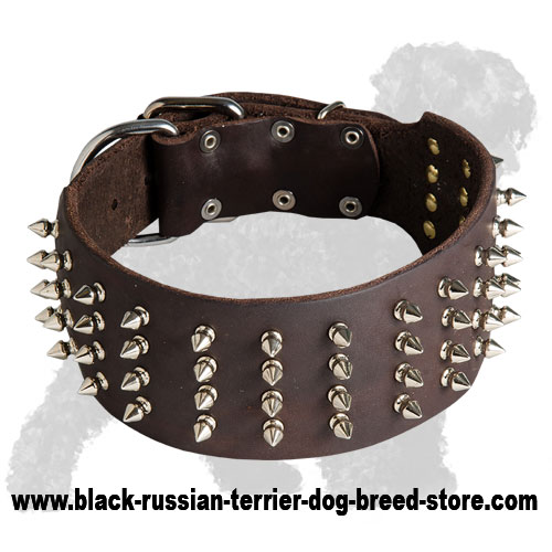 Stylish Wide Leather Russian Terrier Collar with Spikes
