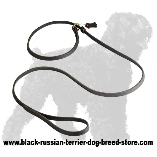 Strong Leather Russian Terrier Leash and Collar Combo
